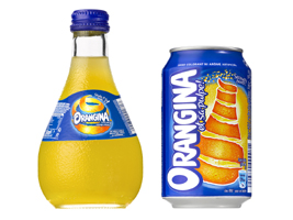 lion capital and the blackstone group orangina deal